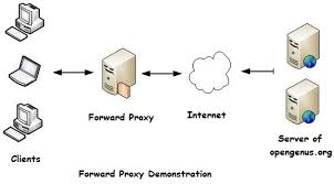 Forward Proxy Server